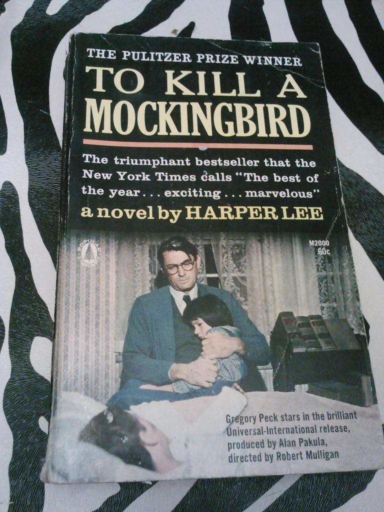 Allusions in To Kill a Mockingbird