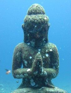 cropped-diving-111.jpg