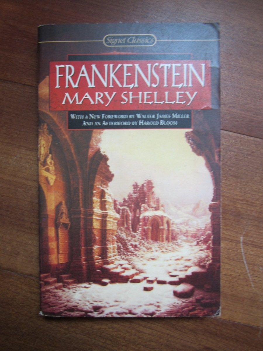 the faults in the creation of frankenstein Frankenstein essays: the creator's faults in the creation frankenstein frankenstein frankenstein frankenstein frankenstein: less human than his.