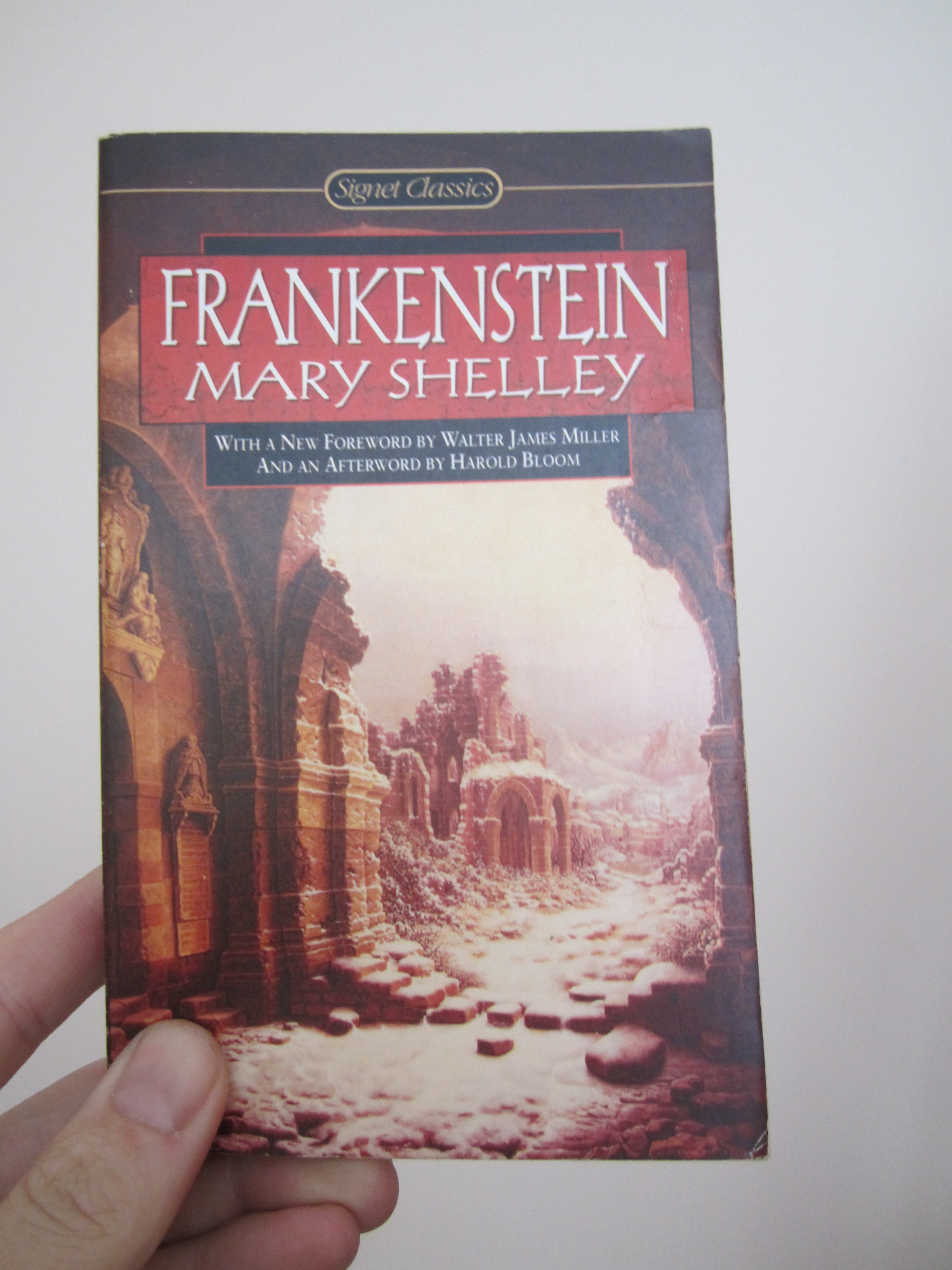 the moral ambiguity in frankenstein a novel by mary shelley Mary shelley (august 30, 1797  humans imagine science and its moral consequences than frankenstein  social at the heart of shelley's novel comes alive in a .