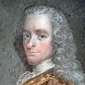 Voltaire-9520178-1-402