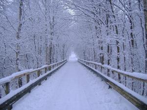 Winter-Scene-Wallpapers