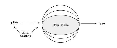 talent-code-diagram