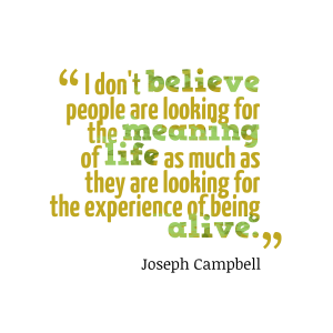 I-dont-believe-people-are__quotes-by-Joseph-Campbell-16