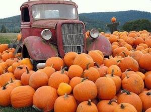 34039-Vintage-Truck-In-The-Pumpkin-Patch