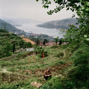 05-fuling-country-life-580