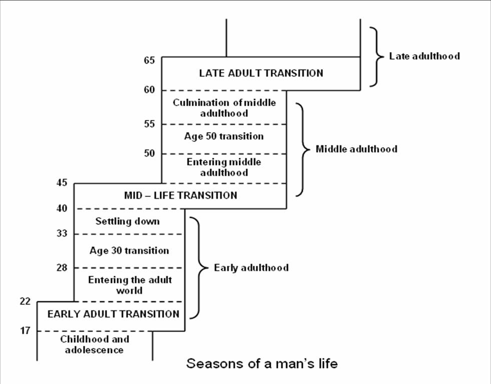 Essay/Term paper: David levinson: seasons' of a man's life